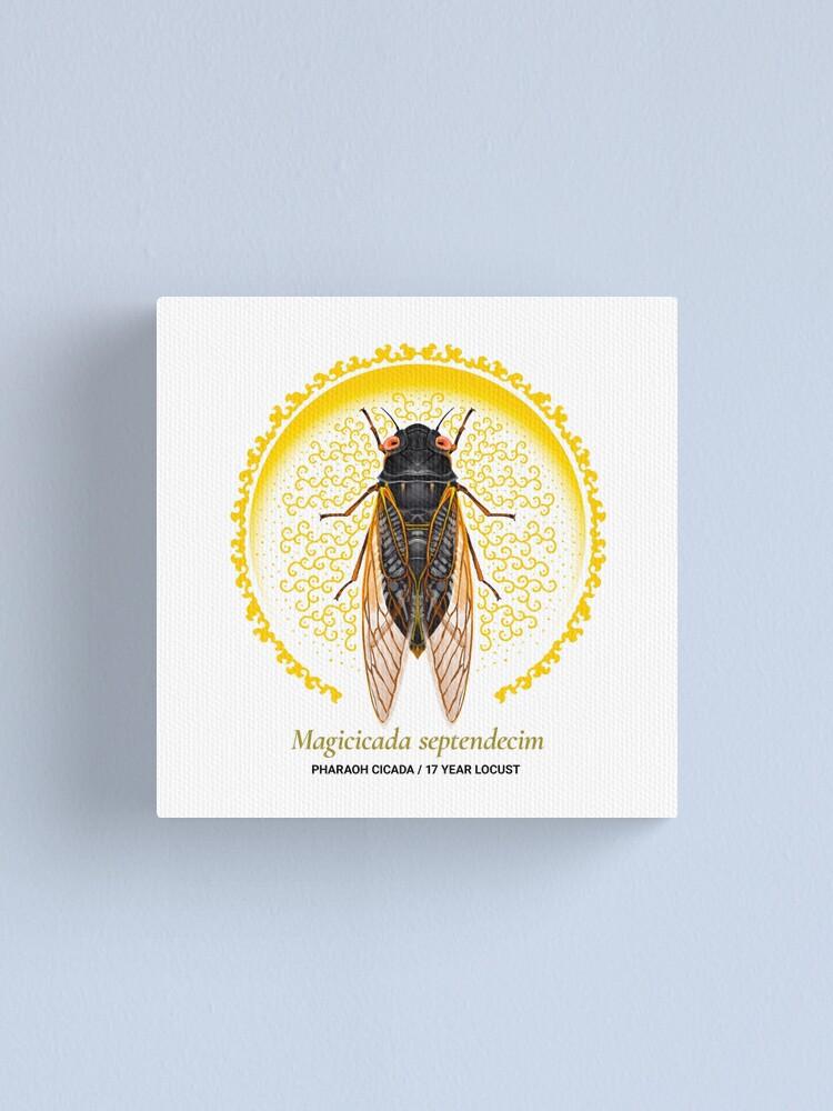 Alternate view of The Circles of Life: Pharaoh Cicada / 17 Year Locust Canvas Print