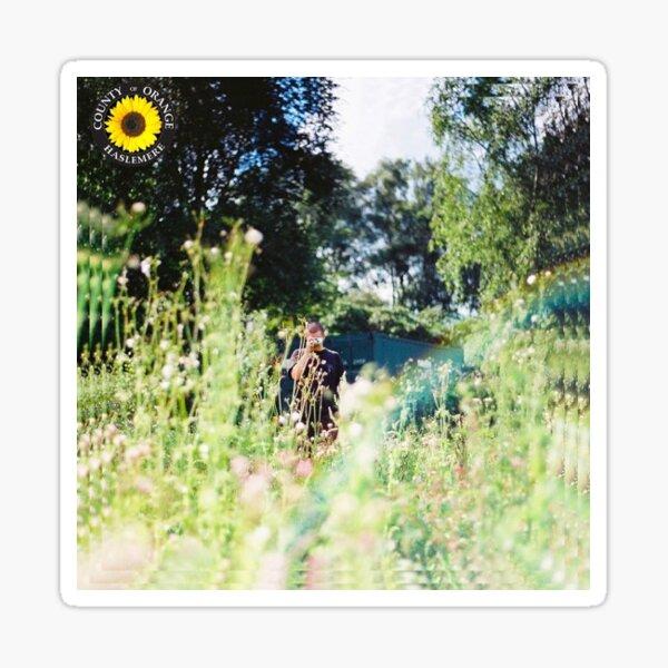 Rex Orange County (Sunflower) Sticker