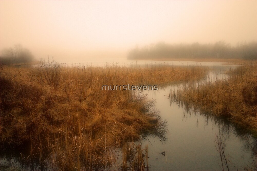 Russell Lake, Dartmouth Nova Scotia by murrstevens