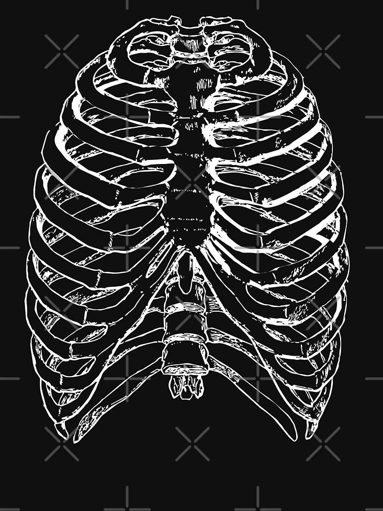 Skeleton Rib Cage by GhostlyWorld