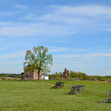 Civil War Artillery at Historic Henry House by lookherelucy