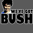 we've got bush by American  Artist