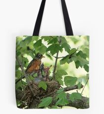 American Robin Family Tote Bag