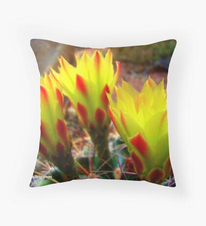 Cactus Promise Kept Throw Pillow