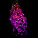 Fantastical Phosphorescent Foxglove (pink) by Ray Warren