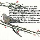 I had a Dove... by Hedgie's Nature & Gardening Journal