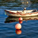 Old Skiff And Floats 2 by Susie Peek