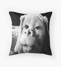 Falkor The Luck Dragon From The Neverending Story Design Throw Pillow