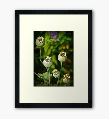 heads up Framed Print