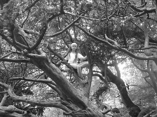 Enchanted Tree by Ladymoose