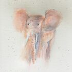 Baby Elephant Watercolour  by Carol Bleasdale