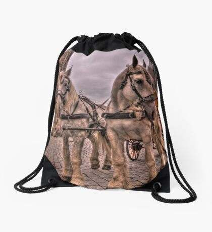 Old Town Dresden Germany Drawstring Bag