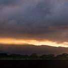 Stormy Hawaiian Sunset - Rose Gold and Amethyst Behind Waianae Mountains by Georgia Mizuleva