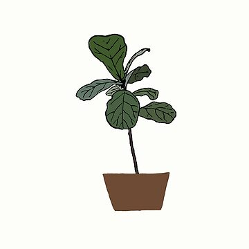 Obsessed with Fiddle Leaf by Stilheart