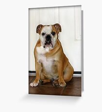 Waiting.....to take care of business.   Greeting Card