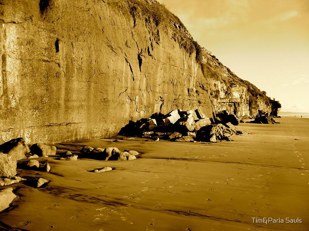 """Encinitas Cliffs in Sepia"" by Tim&Paria Sauls"