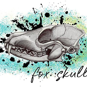 fox skull white (lateral) by ilustradsn