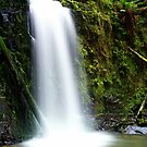 """""""Marriners Falls"""" by Phil Thomson IPA"""