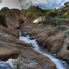Reedy Creek Waterfalls by Dave  Hartley