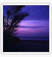 Palm tree on beach Ibiza silhouette against dusk sunset sky square medium format film analogue photos Sticker
