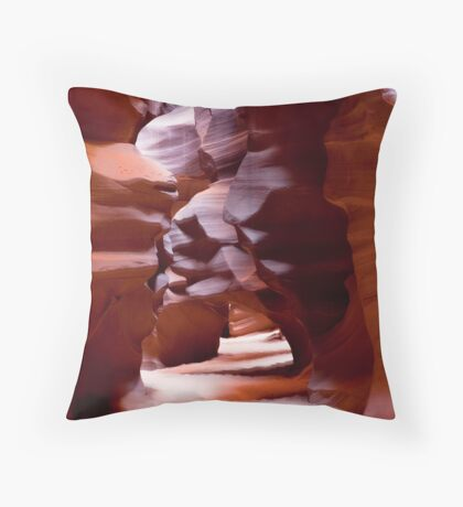 Nature's Labyrinth Throw Pillow