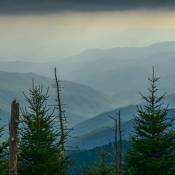 The Great Smoky Mountains, Tennessee. by mattmacpherson