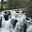Swallow Falls, Betws y Coed, North Wales UK by AnnDixon