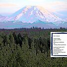Mt Rainier - Stem Gesture Poem by Kenneth S Lapham