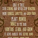 Peaceful Druid Quotes and Advice   Geeky Love and Friendship by PathOfPixels