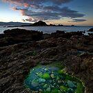 Taputeranga Emeralds  by Ken Wright
