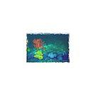 « Mont sous-marin » par Laelart