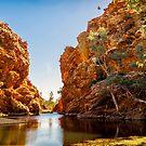 Ellery Creek Big Hole by Bette Devine