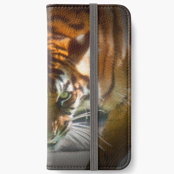 The Stare iPhone Wallet