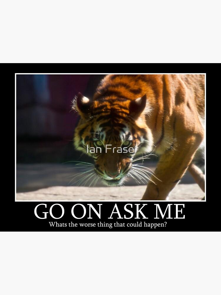 Tiger Terror by Mowog