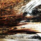 Barren Land by Cassie Robinson