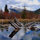 Banff National Park  by Ursula Tillmann