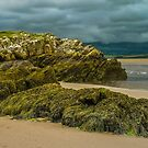 Harlech coastline by RamblingTog