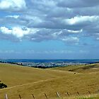 *Our Brown Land - Road from Maryborough, Vic. Australia by EdsMum