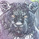 BLACK PANTHER by BOLLA67
