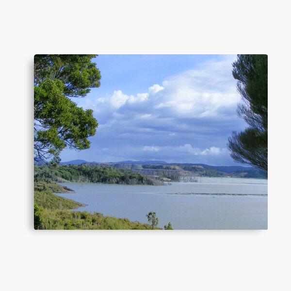 Savage River,  Tasmania Canvas Print