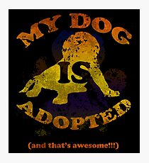 My dog is adopted Photographic Print