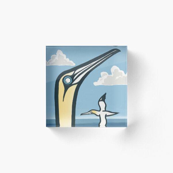 Gannet Acrylic Block