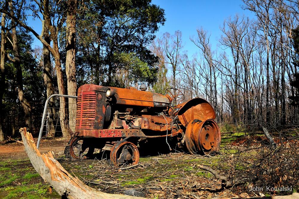 Rust in Peace by John  Kowalski