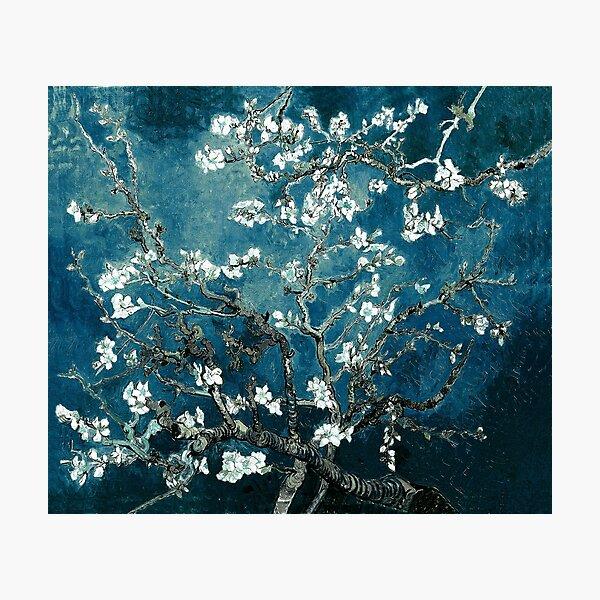Van Gogh Almond Blossoms Dark Teal Photographic Print