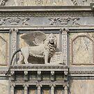 San Marco Lion, Venice by Elena Skvortsova