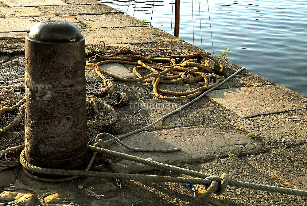 Harbour ropes by triciamary