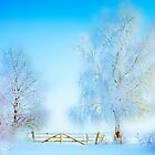 """Winter Landscape  """"Trees with fence"""" by Manfred Belau"""