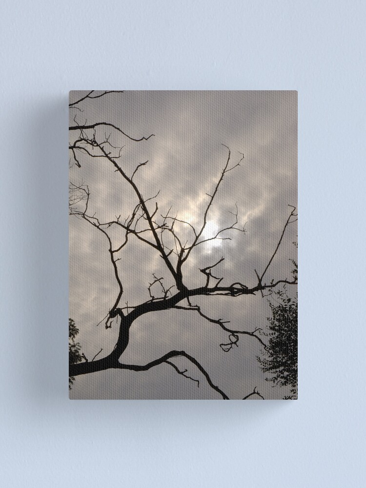 Alternate view of Reaching for the sky Canvas Print