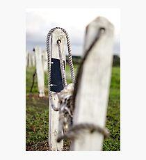 Crooked Ways Photographic Print