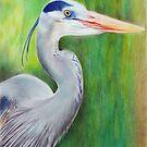 Big Blue Heron in Key West by sunnykcdb